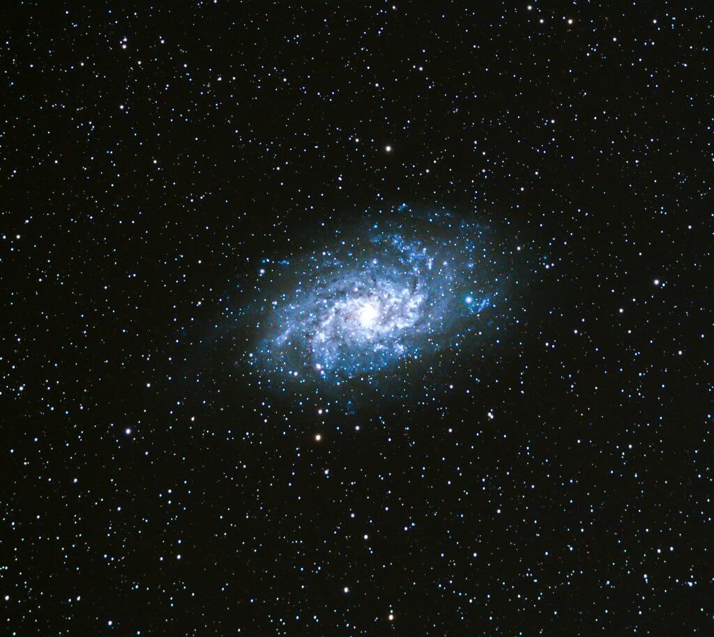 Grassholme Observatory sighting